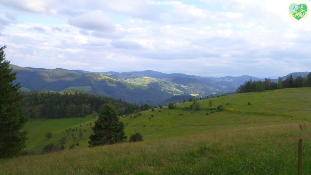 Schwarzwald-Gipfel-Tour